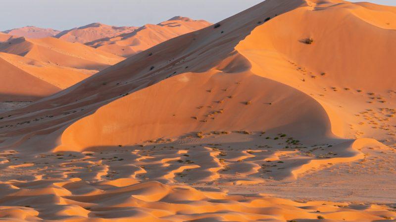 Oman – De Rub al Khali – Het Lege Kwartier