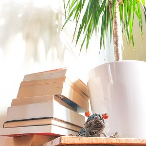 2020 List of Travel Books: Our Books of Wandering