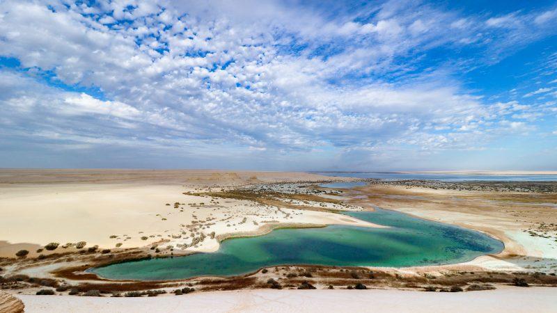 Walvissen in de Woestijn: de Sahara vanuit Caïro